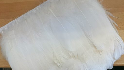 White BE-37 Feather Trim