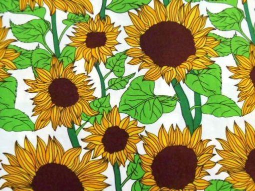 Sunflower Meadow 4