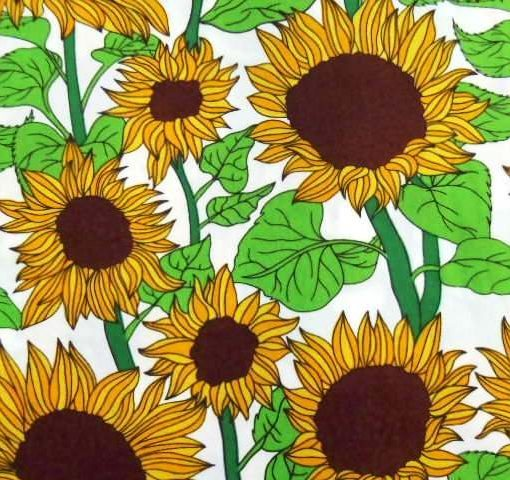 Sunflower Meadow 4