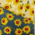 linen daisy