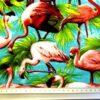 water storks