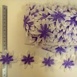 large daisy purple trim