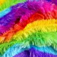 rainbow fringe fur