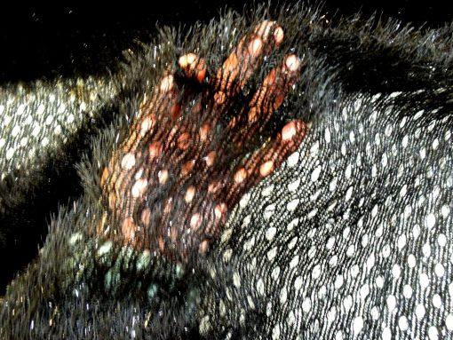 Jersey Fabric Fluffy Fringe Circles Hairy Holes