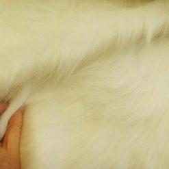 long hair white fur