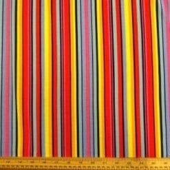T-Shirting Fabric Multi Fun Stripe