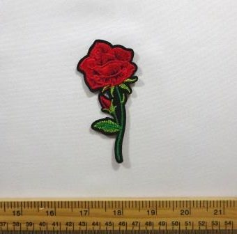Open Rose With Bud