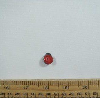 Small (12mmx15mm)